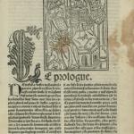 Figure 4: Manuscript LoC Rosenwald 917, f. B1r